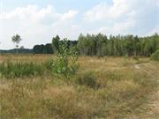 «Європейський консалтинговий центр» починає кампанію з продажу земельних ділянок у Київській області